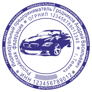 Образец печати ип с логотипом Ростов 5